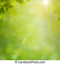 nyár, természetes, elvont, háttér, bokeh, erdő, lombozat, friss