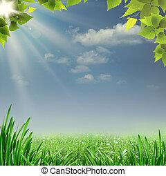 nyár, természetes, ködös, elvont, háttér, noon., tervezés, -e