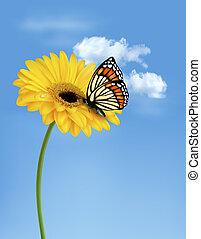 nyár, virág, illustration., természet, sárga, vektor, butterfly.