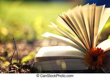 nyílik, virág, fű, könyv