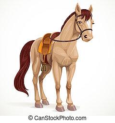 nyersgyapjúszínű bezs, hám, elszigetelt, white háttér, ló, megnyergelt