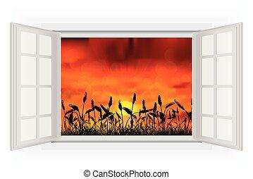 nyit ablak, napnyugta, természet