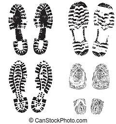 nyomtat, lábfej, cipő, gyermek