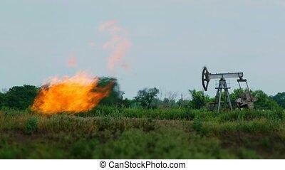 olaj fúrótorony, természet