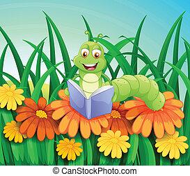 olvasókönyv, kert, féreg