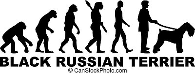 orosz, fekete, fejlődés, terrier, szó