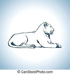 oroszlán, rajz