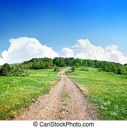 ország, erdő, út