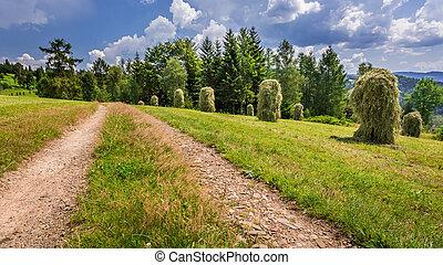 ország, sheaves, széna, út, között
