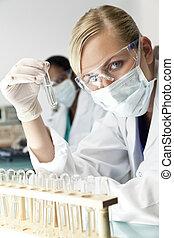 orvos, világos, oldás, természettudós, női, laboratórium, vagy