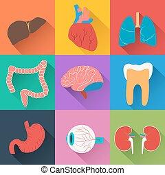 orvosi health, gyűjtés