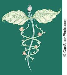 orvosság, választás, jelkép, skicc
