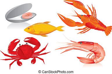 osztriga, garnélarák, folyami rák, seafood:, fish, tengeri rák