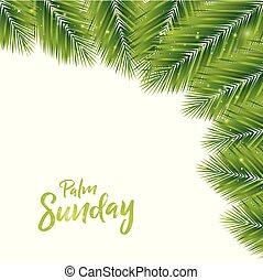 pálma, háttér, vasárnap
