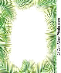 pálma kilépő, fa, fehér