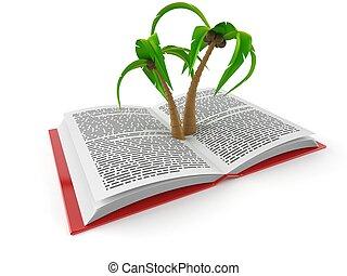 pálma, nyitott könyv