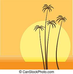 pálma tengerpart