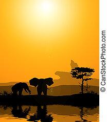 párosít, elefántok