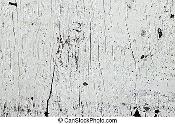 példa, fehér, erdő, természetes, struktúra