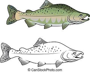 púp, fish, lazac