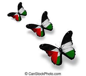 palesztin, pillangók, három, elszigetelt, lobogó, fehér