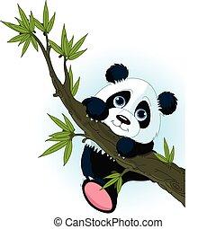 panda, mászik fa, óriási