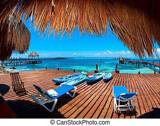 paradise., tropikus, mujeres, mexikó, szünidő, isla