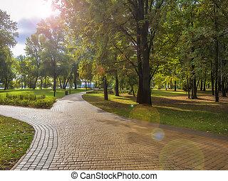 park., sétány, ősz, város, gyönyörű, útburkolat, reggel