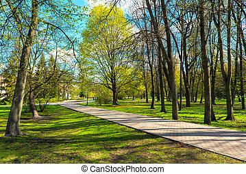 ??park, város, napos nap, eredet