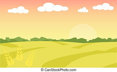 parkosít., búza, illustration., mező, tanya, ábra, háttér., vektor, táj, napkelte