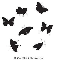 pillangók, állhatatos