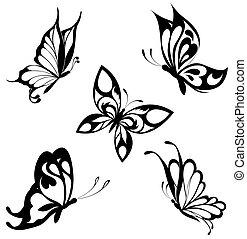 pillangók, állhatatos, fekete, fehér, ta