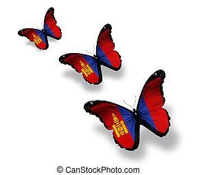 pillangók, elszigetelt, három, lobogó, mongol, fehér