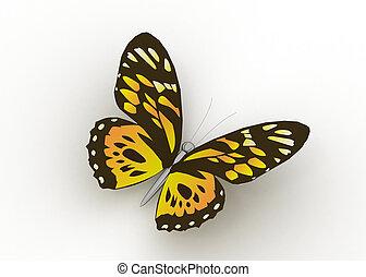 pillangók, fehér, elszigetelt