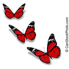 pillangók, fehér, három, piros, elszigetelt