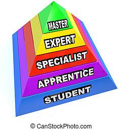 piramis, szakértő, uralom, emelkedik, szakértelem, fiatalúr, diák