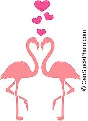 piros, párosít, flamingó
