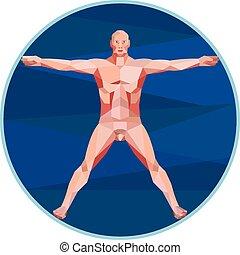 poligon, vinci, akkor, anatómia, alacsony, ember