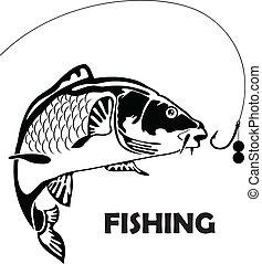 ponty, csalogat, fish