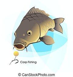 ponty, halászat