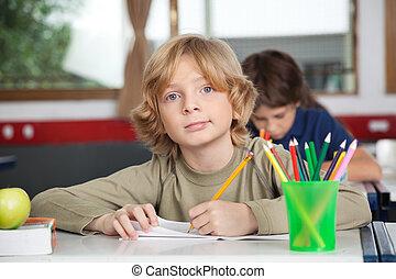 portré, írás, könyv, iskolásfiú, íróasztal