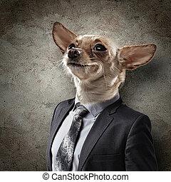 portré, furcsa, kutya, illeszt