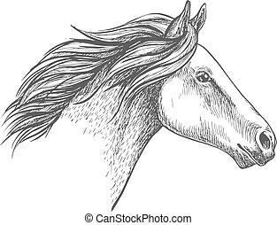 portré, ló, fehér, skicc, ceruza