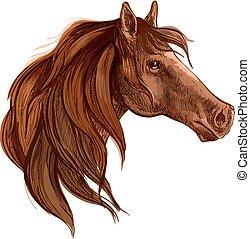portré, ló, sörény, hosszú csaholás