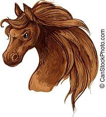 portré, ló, skicc, fej, amerikai félvad ló