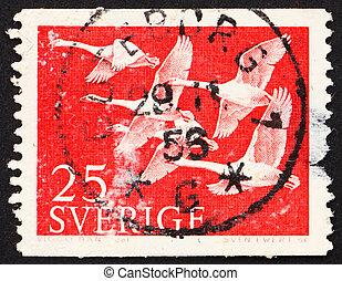postaköltség, hattyú, bélyeg, svédország, 1956, whooper