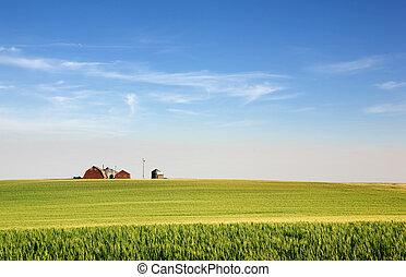 préri, farmland