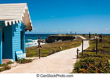 punta, mujeres, mexikó, épület, körképszerű, sur, isla, yucata, kilátás