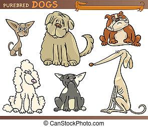 purebred, állhatatos, kutyák, karikatúra