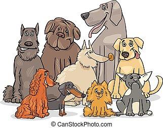 purebred, csoport, kutya, betűk
